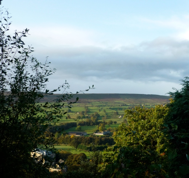 Room with a green and pleasant view, specifically from our kitchen window at Rose Cottage, Ilkley in Yorkshire